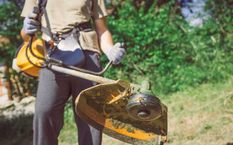 10 best weed trimmers