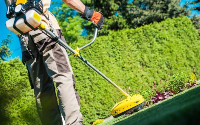 The 10 Best Weed Trimmers For Lawn Maintenance