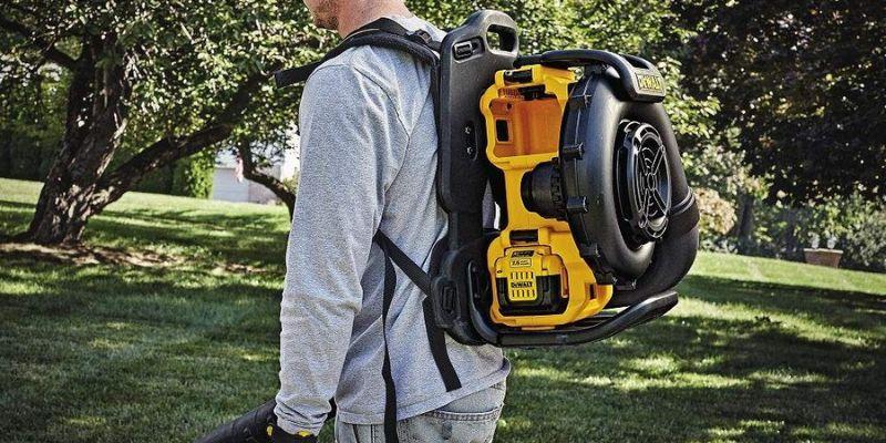 Dewalt backpack leaf blower