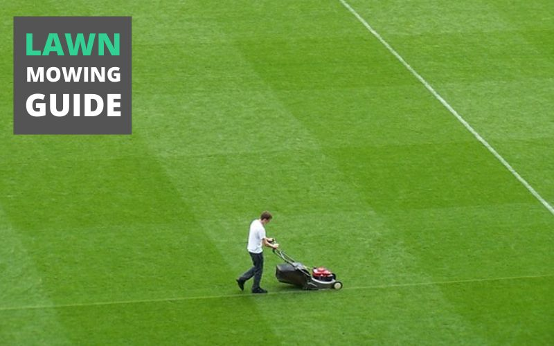 Lawn Mowing Guide – Tips To Mow Like A Pro