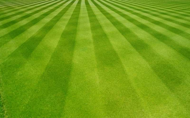 checkerboard lawn striping pattern