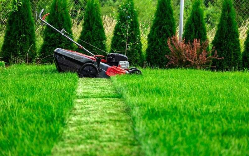 lawn striping with a mower