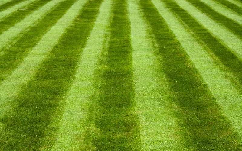 lawn striping guide