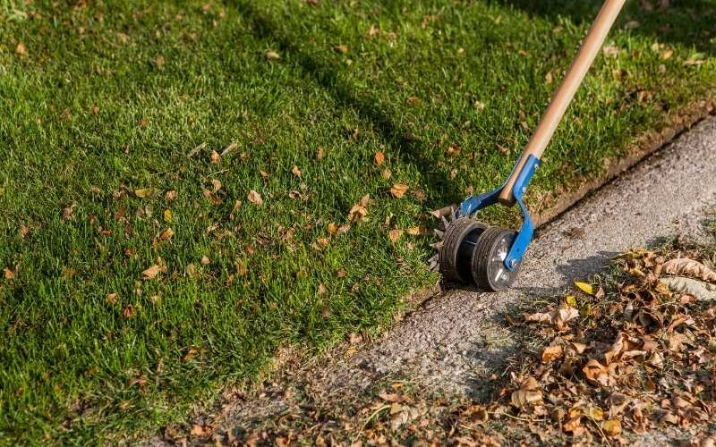 8 Best Landscape Edgers for Lawn and Flower Bed Edging