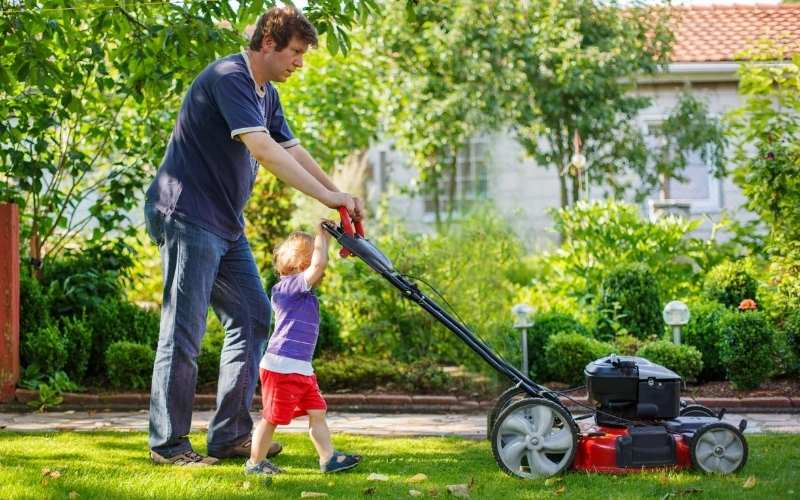 lawn mower for garden